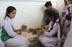 Habib Girls' School